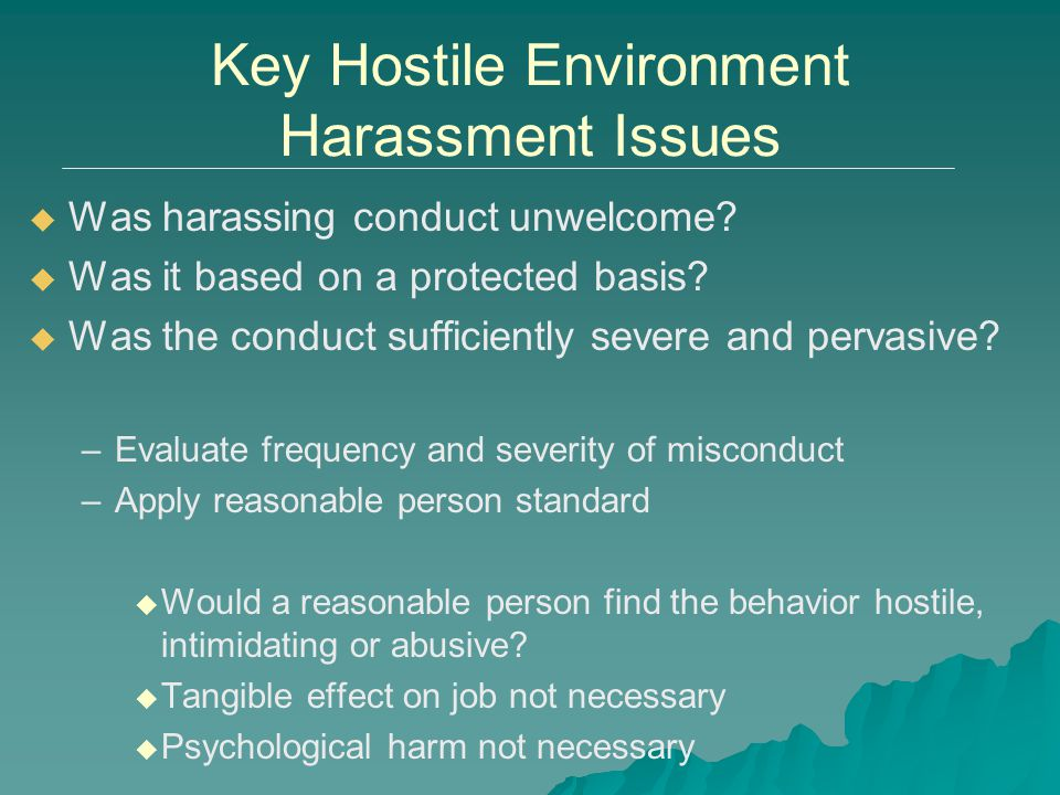 Key Hostile Environment Harassment Issues