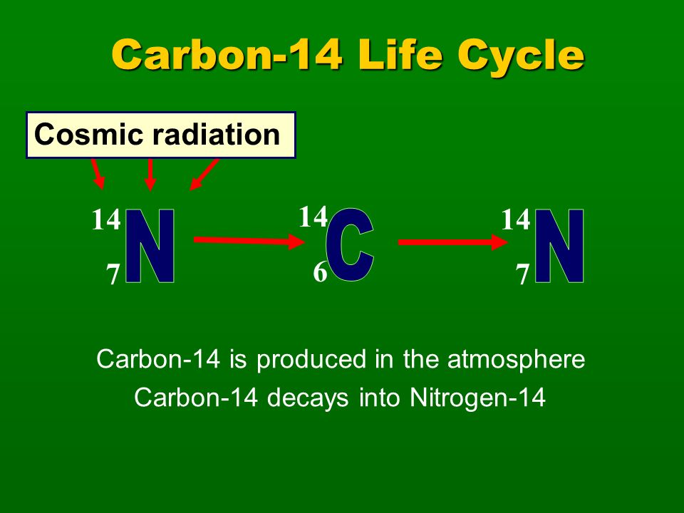 Carbon-14 Life Cycle N C N Cosmic radiation 14 7 14 6 14 7