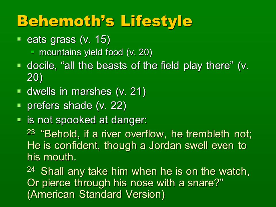 Behemoth's Lifestyle eats grass (v. 15)