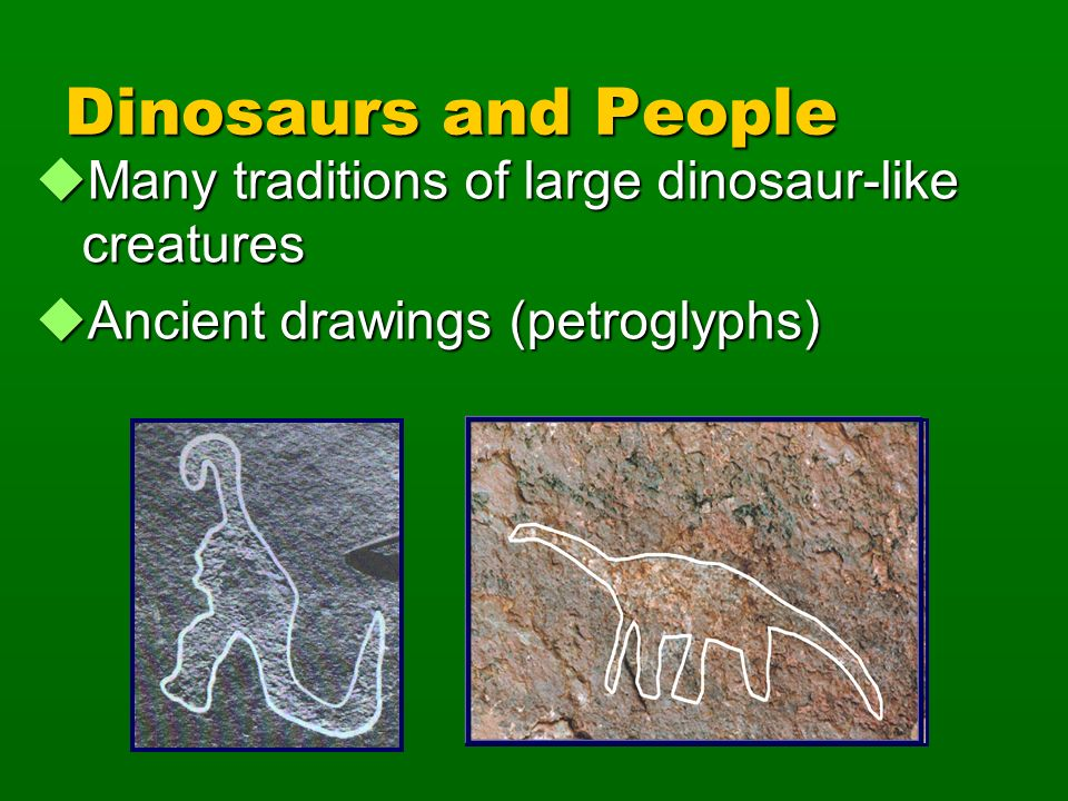 Dinosaurs and People Many traditions of large dinosaur-like creatures