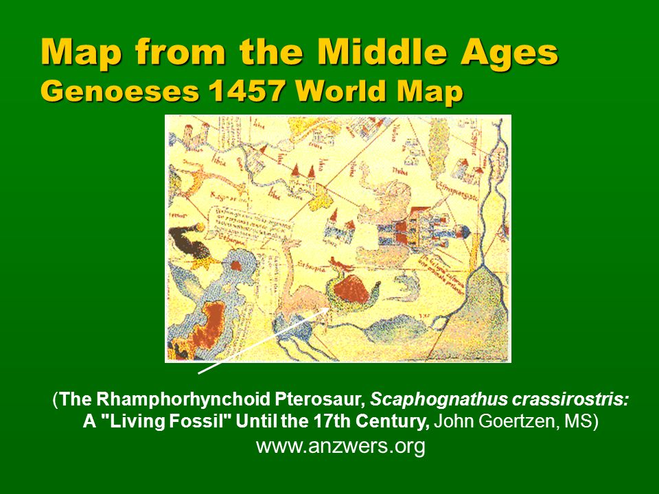 Map from the Middle Ages Genoeses 1457 World Map