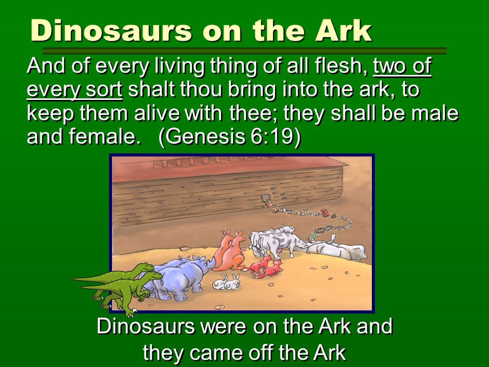 Dinosaurs were on the Ark and they came off the Ark