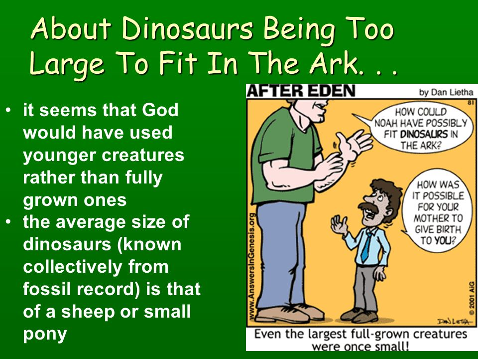 About Dinosaurs Being Too Large To Fit In The Ark. . .
