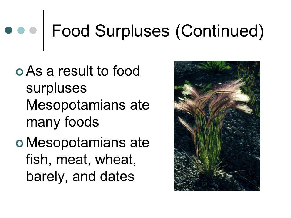 Food Surpluses (Continued)