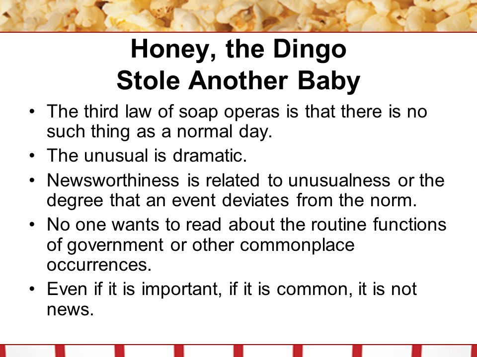 Honey, the Dingo Stole Another Baby