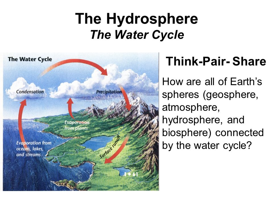 The Hydrosphere The Water Cycle