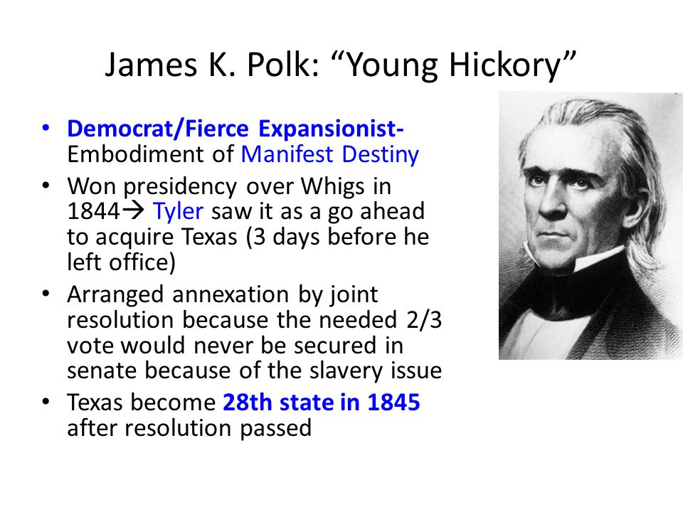 James K. Polk: Young Hickory