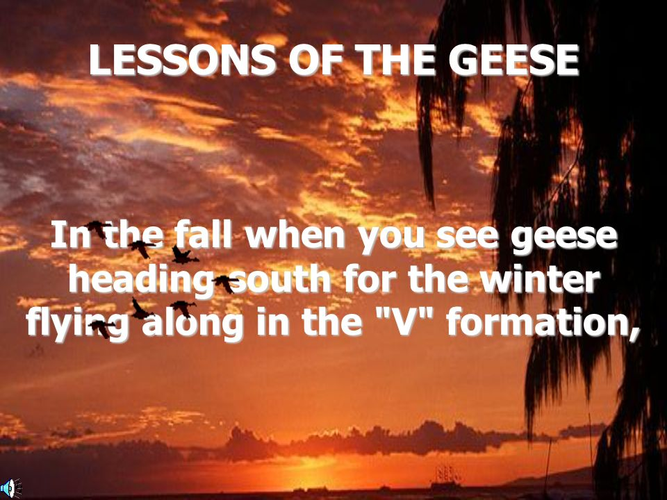 LESSONS OF THE GEESE In the fall when you see geese heading south for the winter flying along in the V formation,