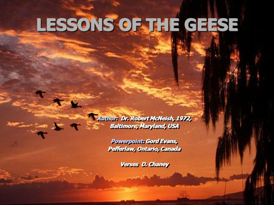 LESSONS OF THE GEESE Author: Dr. Robert McNeish, 1972,