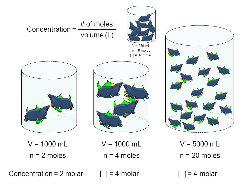 Concentration = # of moles volume (L) V = 1000 mL V = 1000 mL