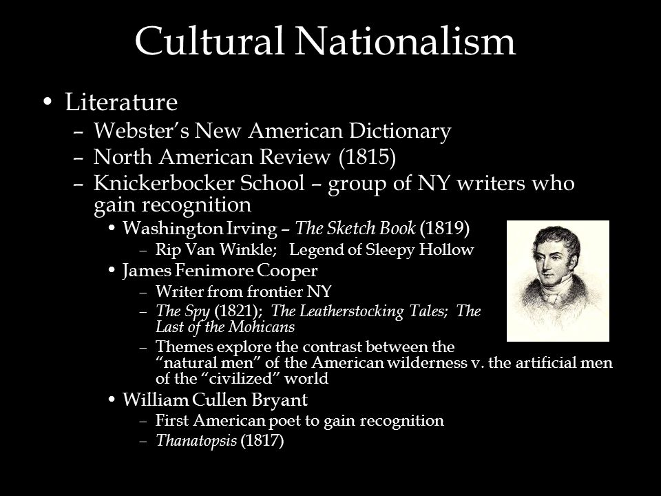 Cultural Nationalism Literature Webster's New American Dictionary