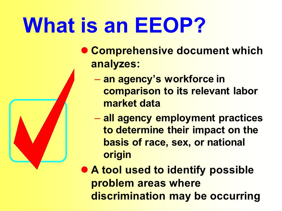 What is an EEOP Comprehensive document which analyzes: