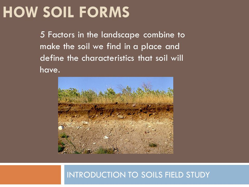 Introduction to soils field study ppt video online download for Soil characteristics definition