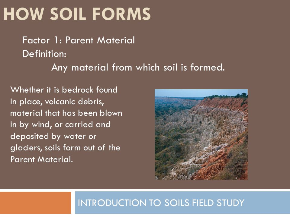 INTRODUCTION TO SOILS FIELD STUDY