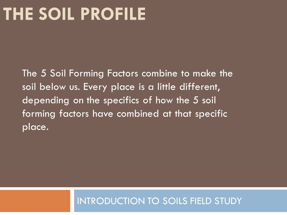 Introduction to soils field study ppt video online download for Soil forming factors