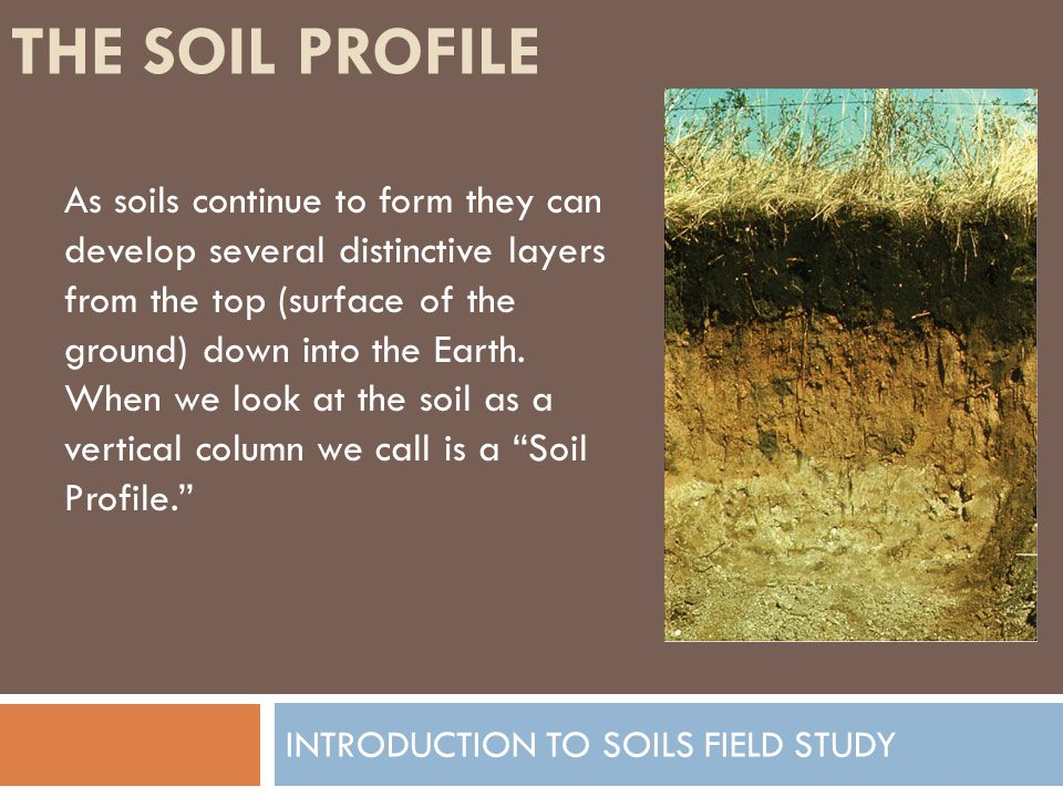 Introduction to soils field study ppt video online download for Introduction of soil