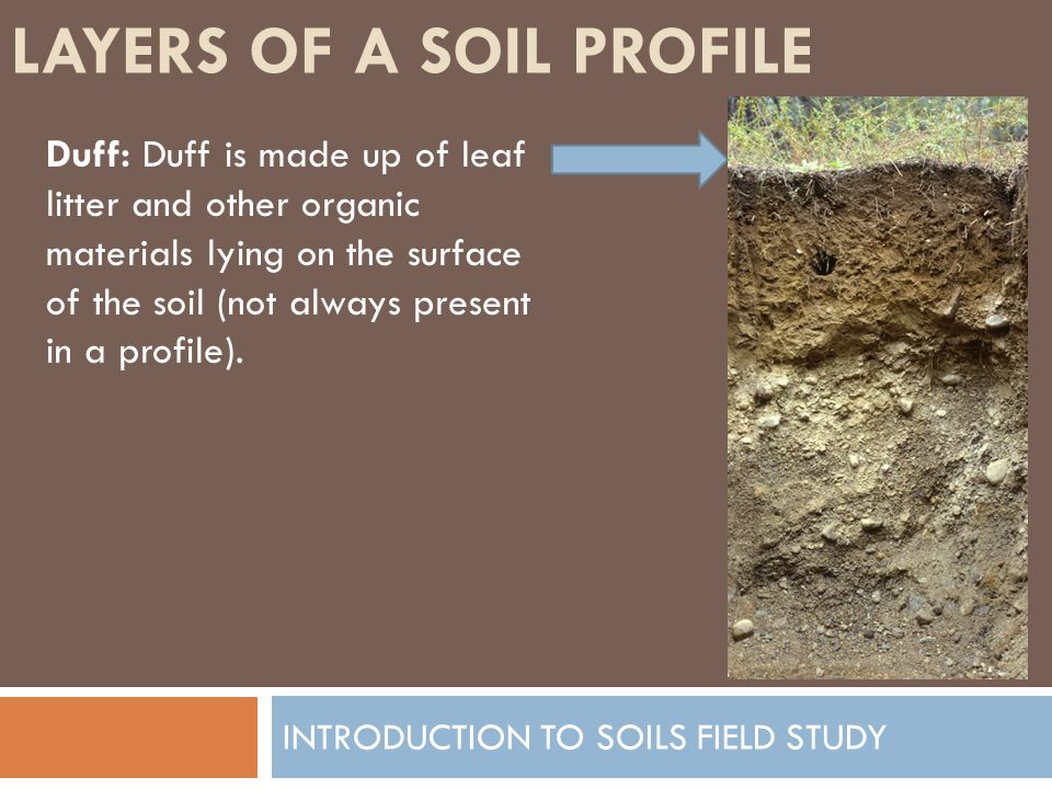 Introduction to soils field study ppt video online download for What are the different layers of soil