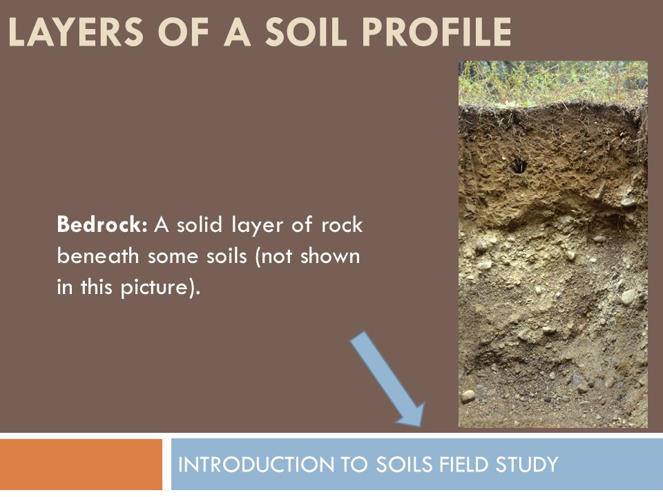 LAYERS OF A SOIL PROFILE