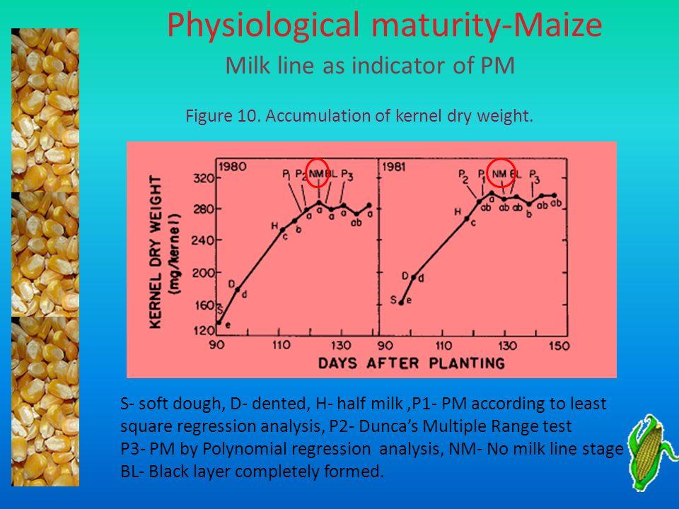 Physiological maturity-Maize