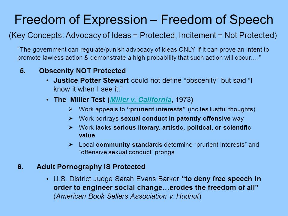 an essay on obscenity blasphemy and the freedom of expression I chose to put this collection of essays into my book because they represent the strong central theme of freedom of expression as the cornerstone of american government, culture and life11 each essay strongly defends a case for free commercial speech.