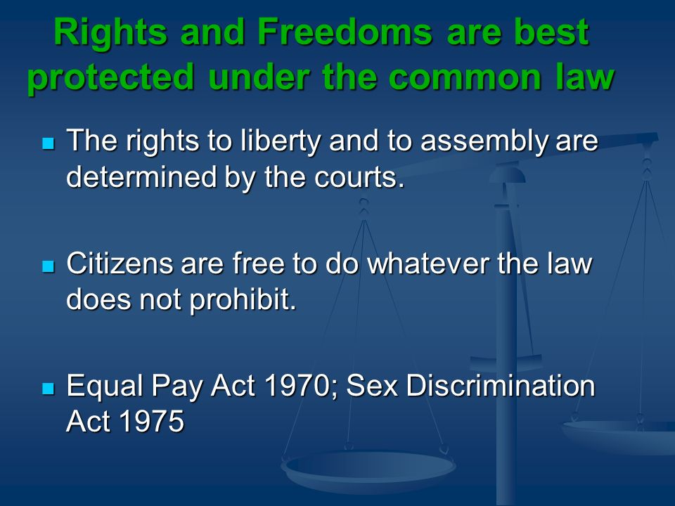 Rights and Freedoms are best protected under the common law