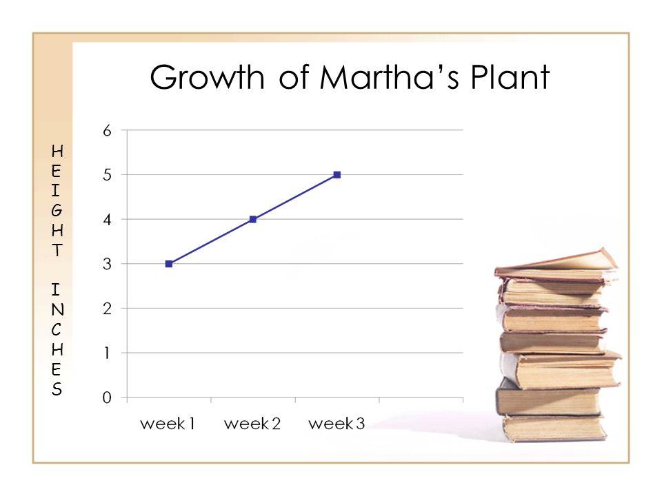Growth of Martha's Plant