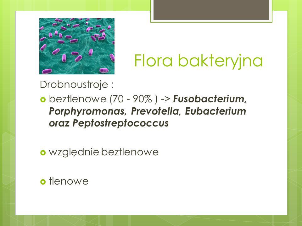 Flora bakteryjna Drobnoustroje :