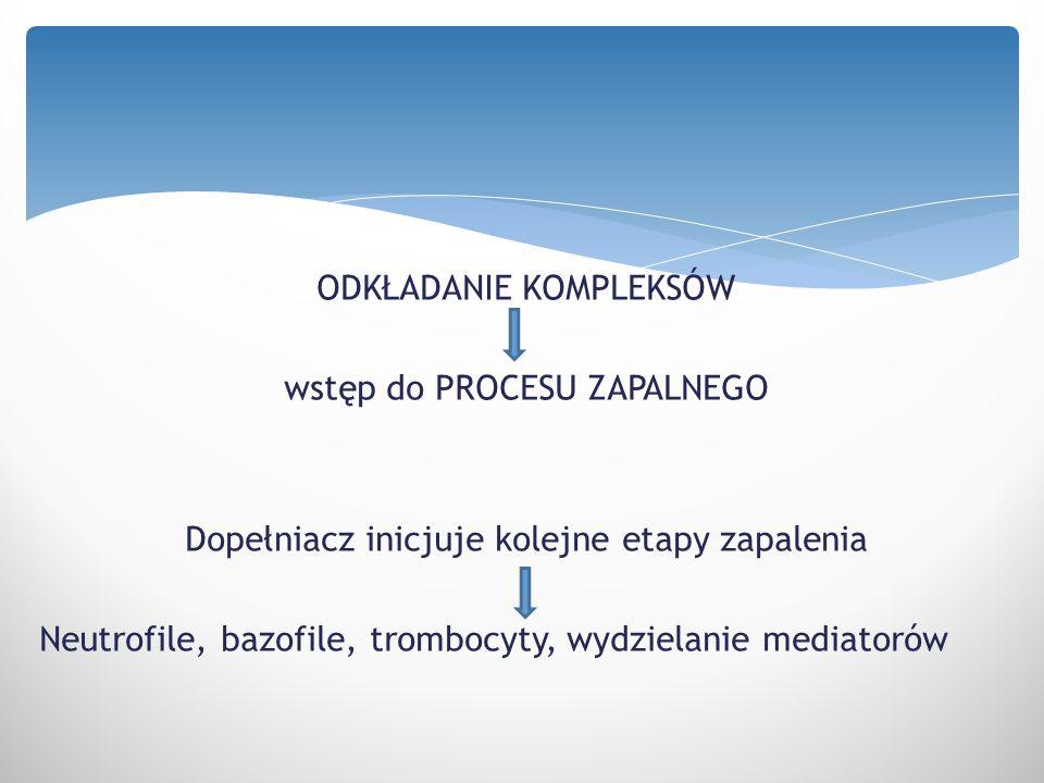 ODKŁADANIE KOMPLEKSÓW wstęp do PROCESU ZAPALNEGO Dopełniacz inicjuje kolejne etapy zapalenia Neutrofile, bazofile, trombocyty, wydzielanie mediatorów