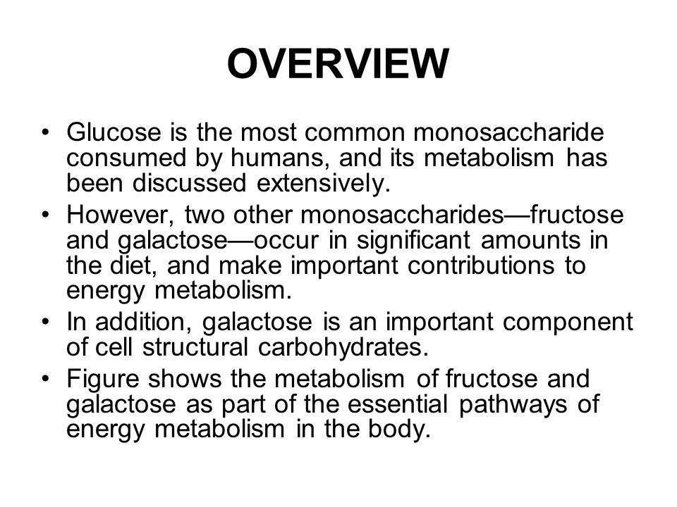 OVERVIEW Glucose is the most common monosaccharide consumed by humans, and its metabolism has been discussed extensively.