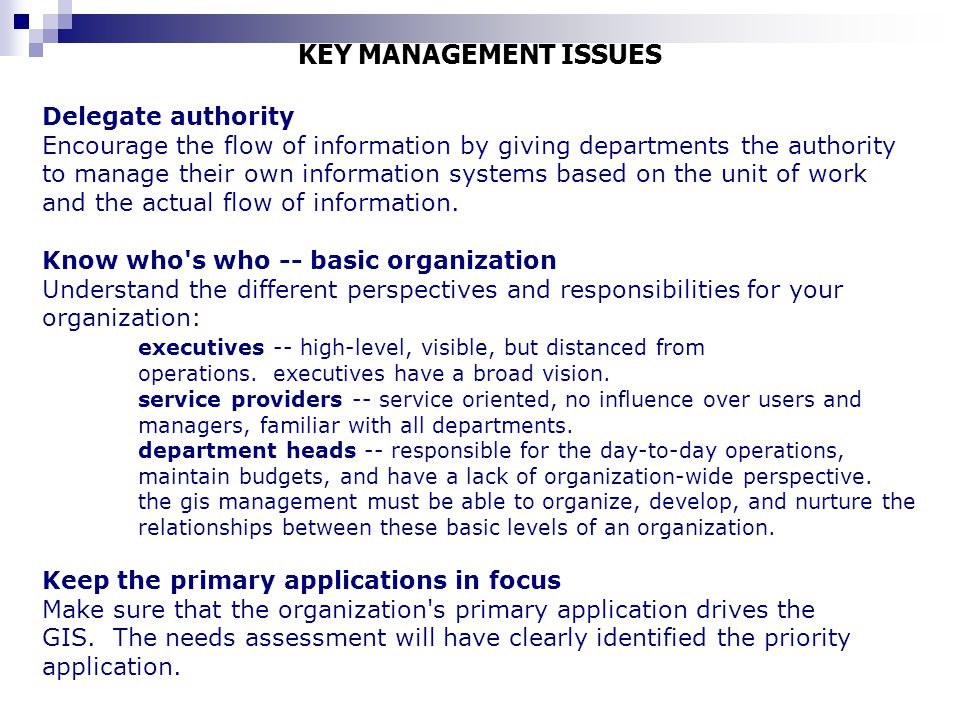 KEY MANAGEMENT ISSUES Delegate authority