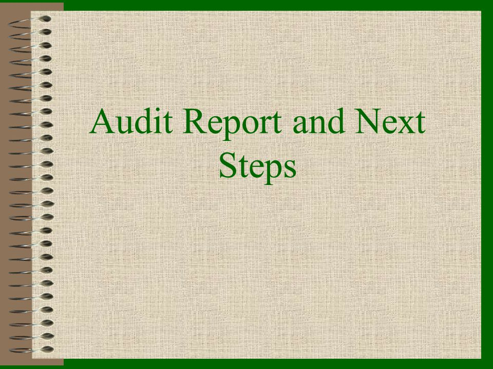 Audit Report and Next Steps