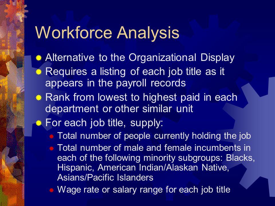 Workforce Analysis Alternative to the Organizational Display
