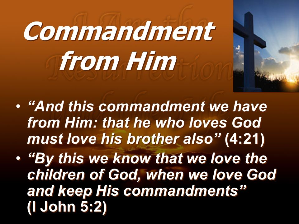 Commandment from Him And this commandment we have from Him: that he who loves God must love his brother also (4:21)