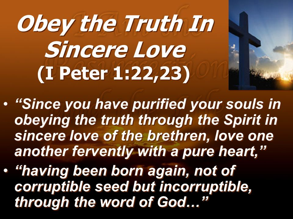 Obey the Truth In Sincere Love (I Peter 1:22,23)