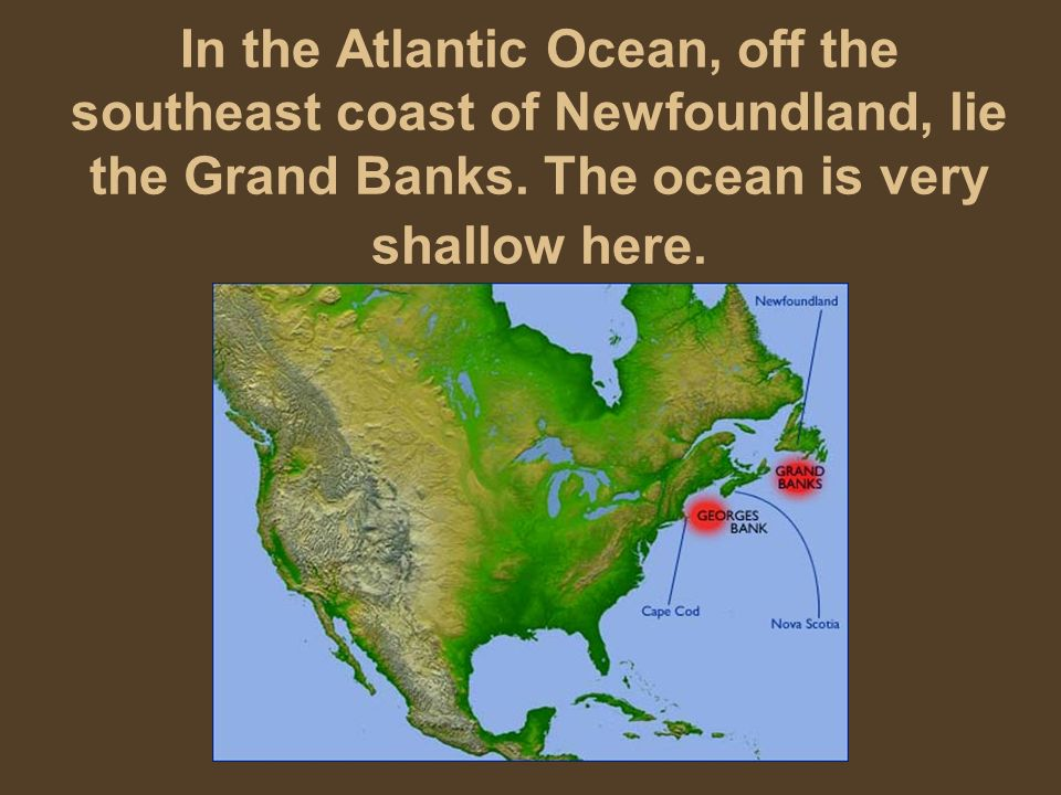 In the Atlantic Ocean, off the southeast coast of Newfoundland, lie the Grand Banks.