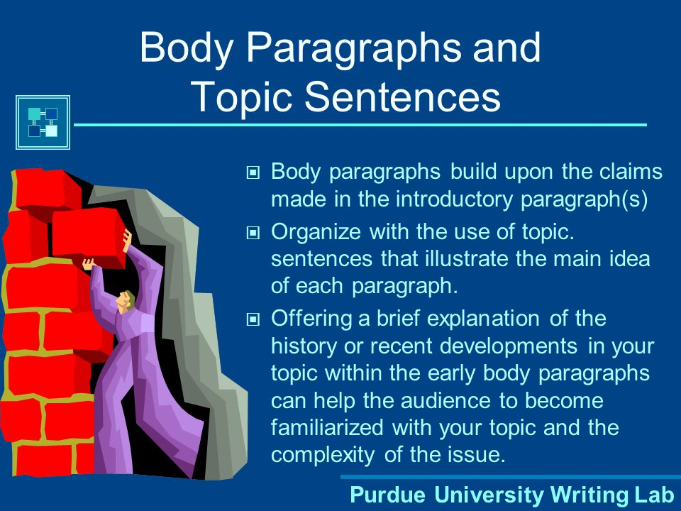 Body Paragraphs and Topic Sentences
