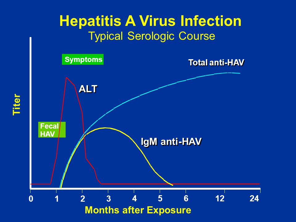 Hepatitis A Virus Infection