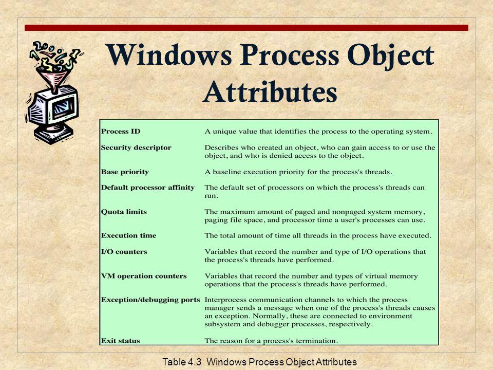 Windows Process Object Attributes