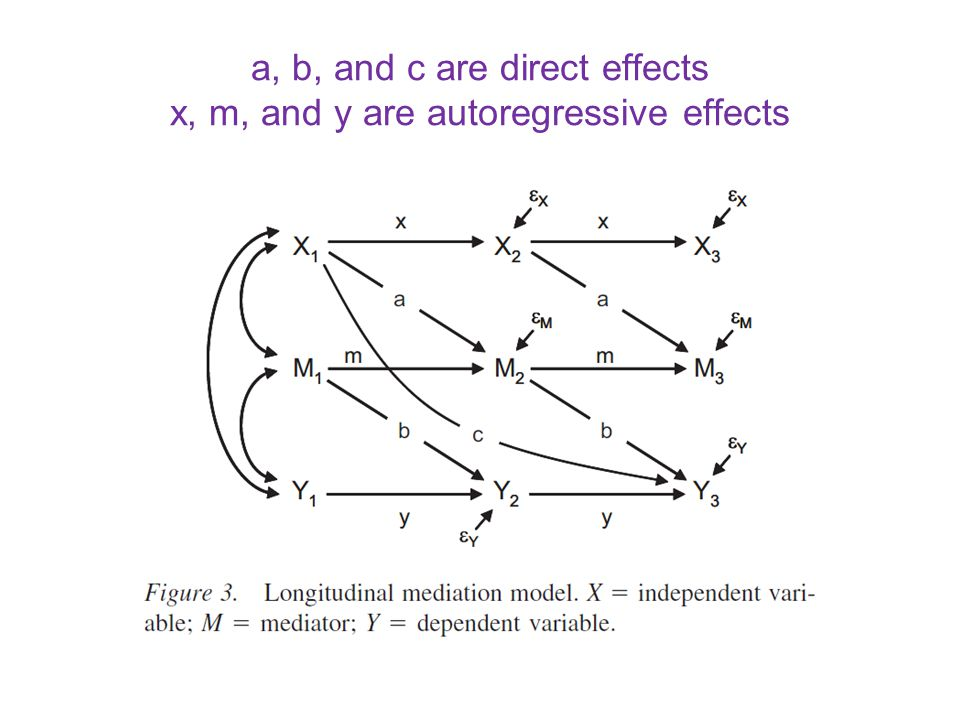 a, b, and c are direct effects x, m, and y are autoregressive effects