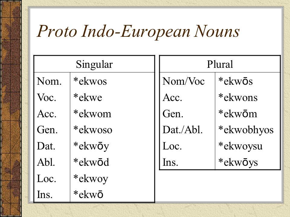 Proto Indo-European Nouns