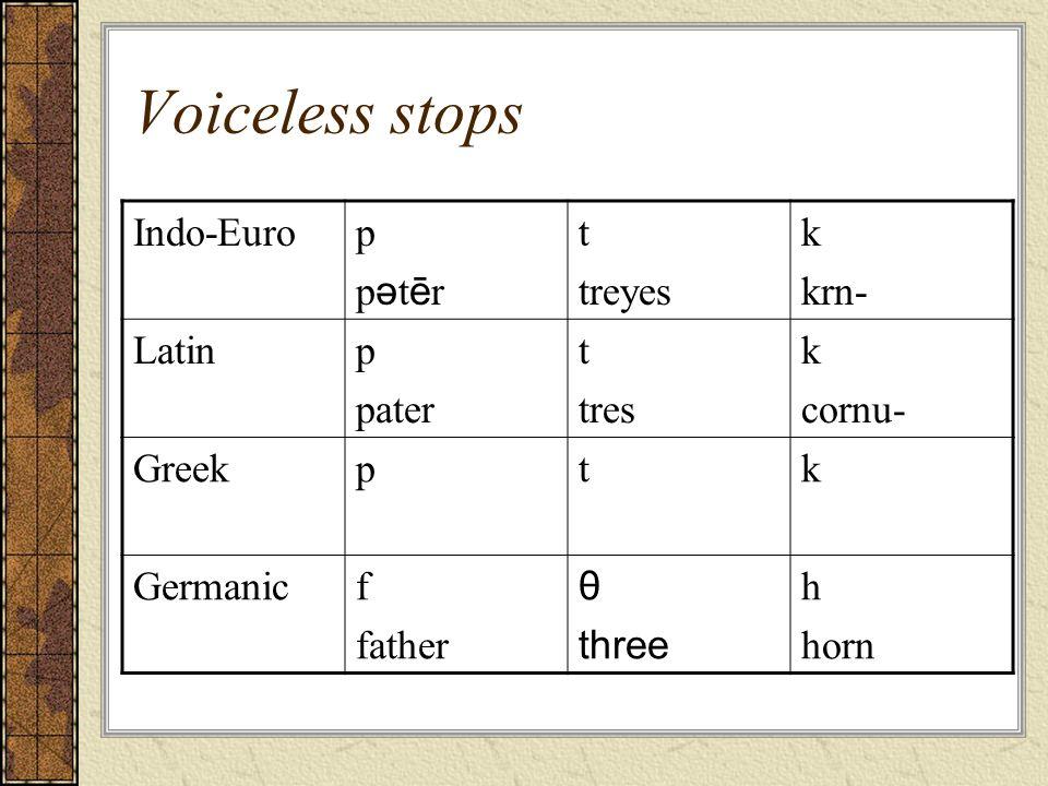 Voiceless stops Indo-Euro p pətēr t treyes k krn- Latin pater tres
