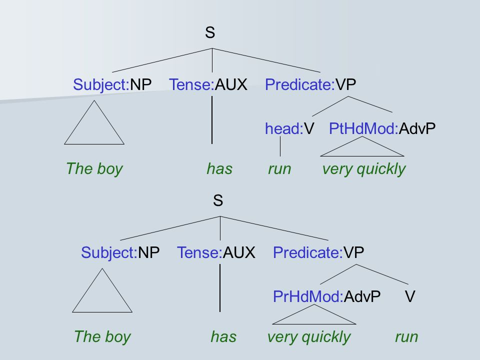 S Subject:NP Tense:AUX Predicate:VP. head:V PtHdMod:AdvP. The boy has run very quickly.