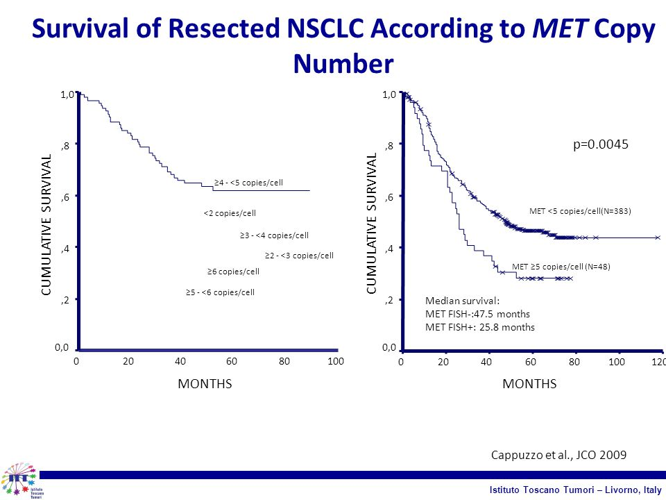Survival of Resected NSCLC According to MET Copy Number