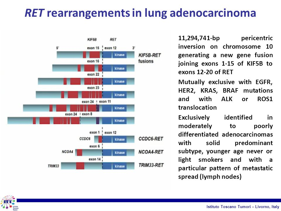 RET rearrangements in lung adenocarcinoma