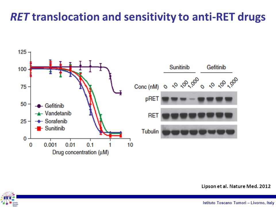 RET translocation and sensitivity to anti-RET drugs