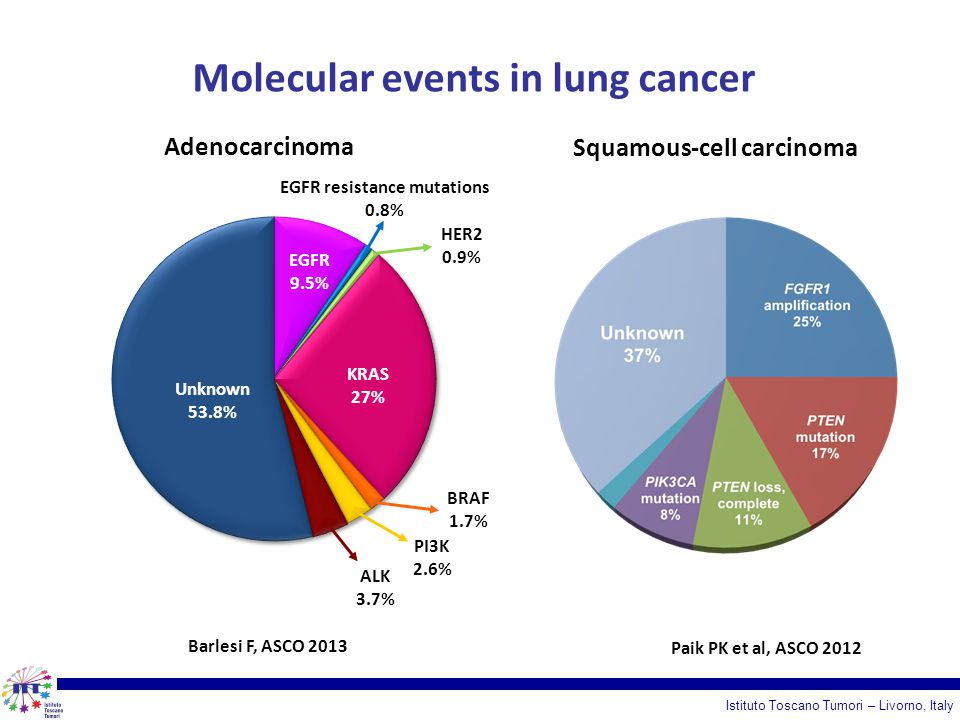 Molecular events in lung cancer