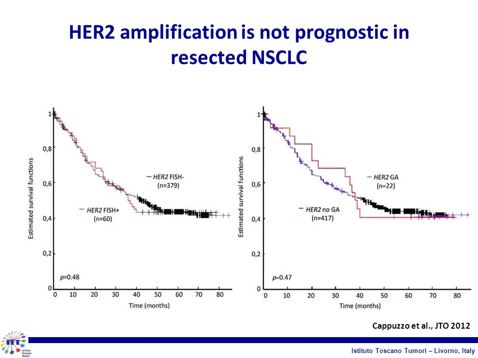 HER2 amplification is not prognostic in resected NSCLC
