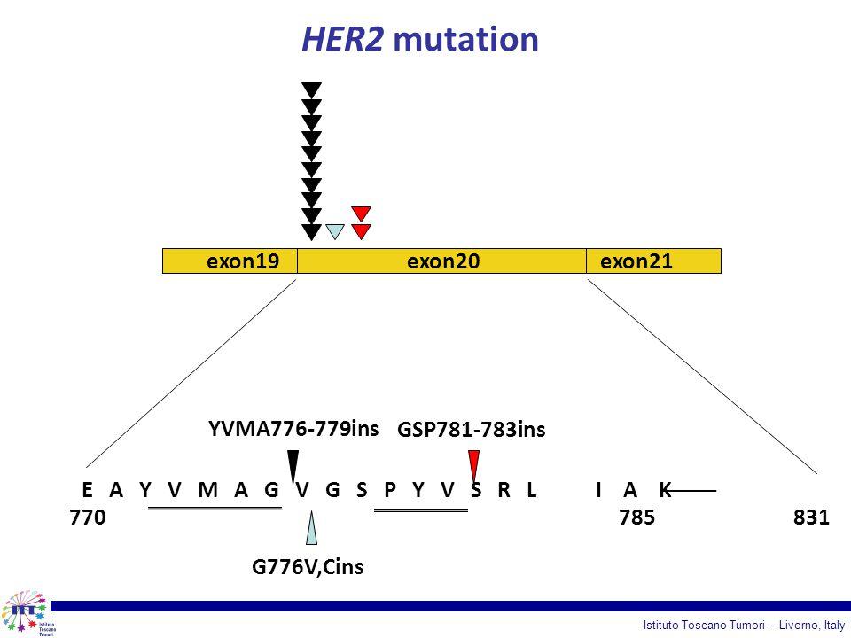 HER2 mutation exon19 exon20 exon21 YVMA776-779ins GSP781-783ins