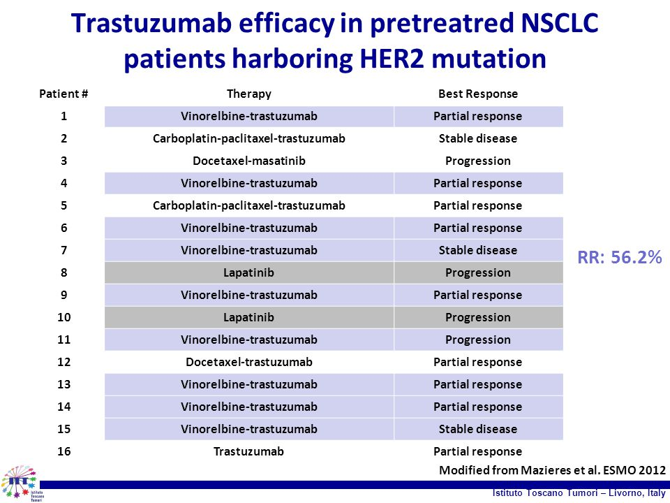 Trastuzumab efficacy in pretreatred NSCLC patients harboring HER2 mutation