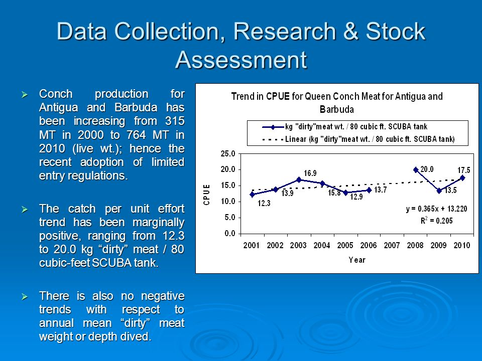 Data Collection, Research & Stock Assessment